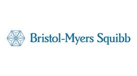 Bristol - Direto Contabilidade